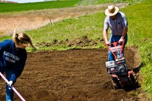 Jill shoveling and Dad tilling